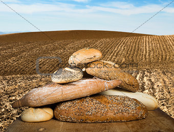 Bread and wheat cereal crops. Plowed land