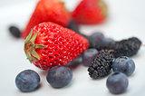 berries on white