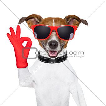 ok fingers dog