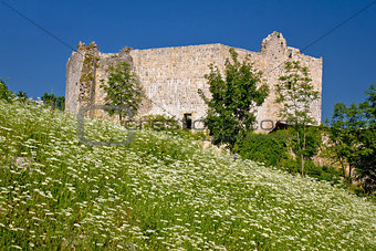 Slunj old fortress in green nature