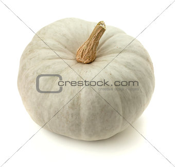 Small white pumpkin
