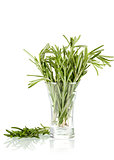 The bunch of rosemary in glass