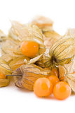 Physalis fruits on white