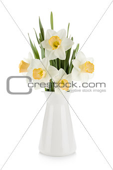 Bouquet of white daffodils in flowerpot