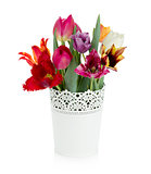 Multi colored tulips in flowerpot