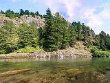 Lewis River Landscape
