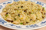 Chinese Fried Rice with Barbeque Pork and Shrimp Closeup