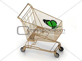Green butterfly flew to the basket