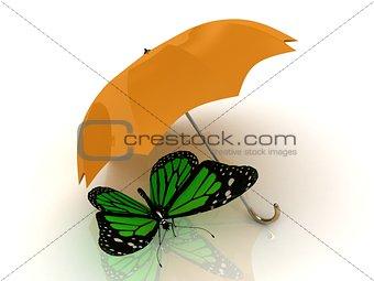 Green butterfly sits under an orange umbrella
