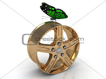 Green butterfly sits under the gold rims