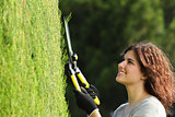 Close up of a gardener woman pruning a cypress