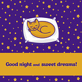 Card with cute little cat sleeping on pillow