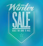blue and green lights winter sale poster