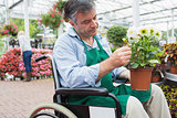 Garden center worker in wheelchair holding potted plant