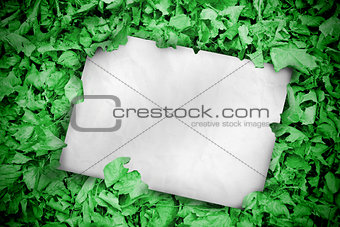 White poster buried into green leaves