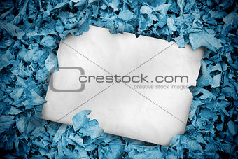 White poster buried into blue leaves