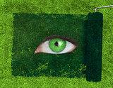 Paint roller revealing a green eye