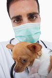 Male vet holding a sick chihuahua