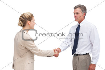 Mature businessman shaking hands with his coworker