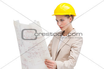 Architect reading construction plan
