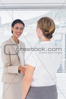 Attractive businesswomen shaking hands