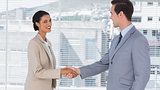 Businesswoman shaking hands to businessman