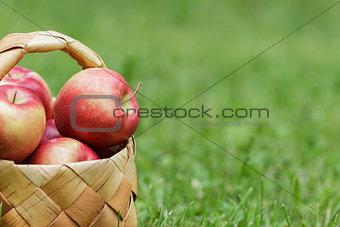 wicker basket full of gala apples
