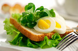 Sandwich with boiled chicken egg, lettuce and spinach