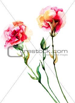 Beautiful Cloves flowers