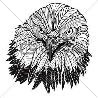 Bald eagle head as USA symbol for mascot or emblem design, such a logo.