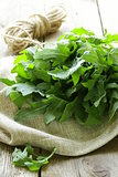 bunch of fresh green arugula on the wooden table