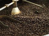 coffee beans in roast machine