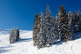 Ski Slope and Beautiful  Landscape in Megeve, French Alps, Franc