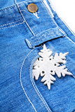 Snowflake in a pocket of blue jeans.