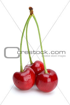 Three ripe red cherries