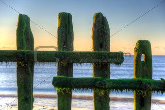 Old groynes on beach last defense at sunrise against tide