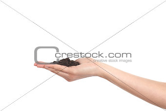 Woman cupped hand holding soil