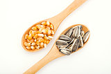 Corn and sunflower seed on wood spoon