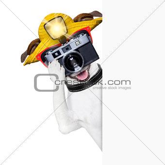 tourist dog photographer