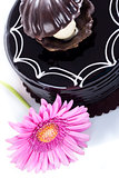 Chocolate cake and african daisy