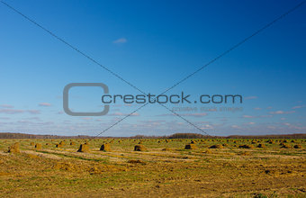 August landscape with a haystacks on the field