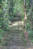 Indigenous stone stairs in Ciudad Perdida archeological site