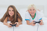 Portrait of siblings playing video games