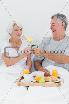 Man giving wife a yellow rose