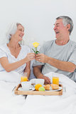 Mature man giving wife a yellow rose