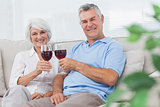 Couple clinking their red wine glasses