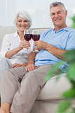Husband and wife clinking their glasses of red wine