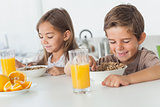 Cheerful siblings eating cereal together