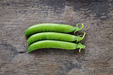 fresh pea pods in a row