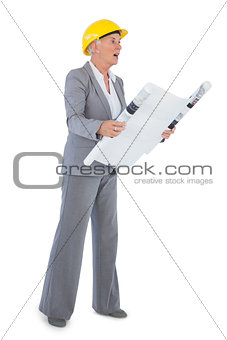 Architect with plan wearing hardhat